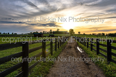 Country lane between pastures