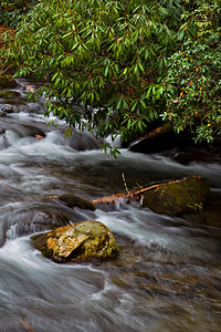 Rivers and streams through Great Smoky Mountains National Park in Tennessee.  © Kyle Spradley Photography | www.kspradleyphoto.com