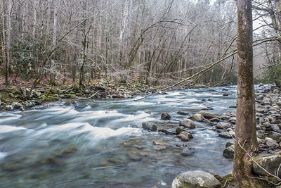 Winter at Middle Creek, Great Smoky Mountains National Park.