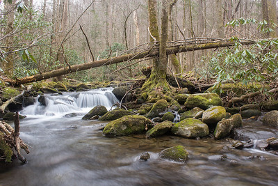 A waterfall in the Twin Creeks section of Great Smoky Mountains National Park, Tennessee.