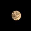 Moon-N-Tree