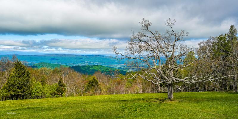 Tanner's Ridge Overlook