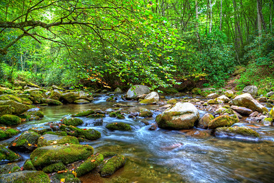 Ocanaluftee River