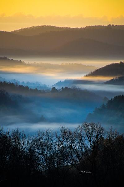 New River Fog