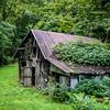 Weed Barn