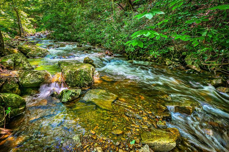 Laurel Creek Cool