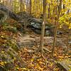 Autumn Trail Shot near Harpers Ferry
