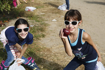 Apple and Pumpkin Picking 2013