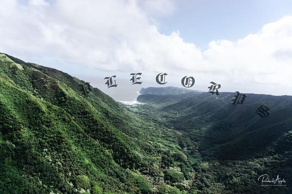 MauiAir_Jan_2019-447
