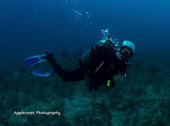 BlueTangApr1_2012-3