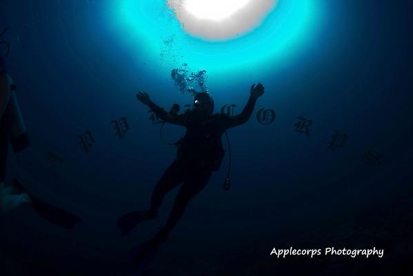 BlueTangApr1_2012-18