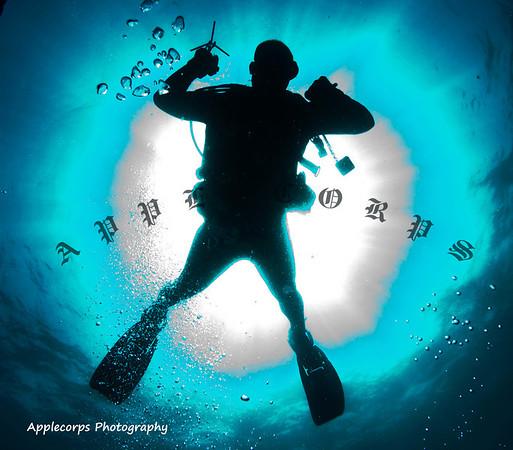 BlueTangApr1_2012-21