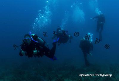 BlueTangApr1_2012-4