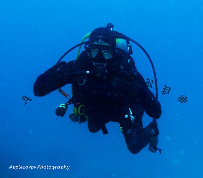 BlueTangMay26_2012-5