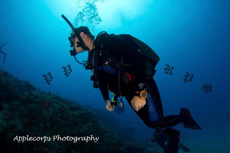 BlueTangMay4_2012-7