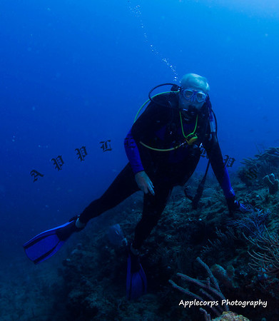 BlueTangMay30_2012-11