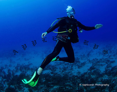 Mystery Diver W_Signature
