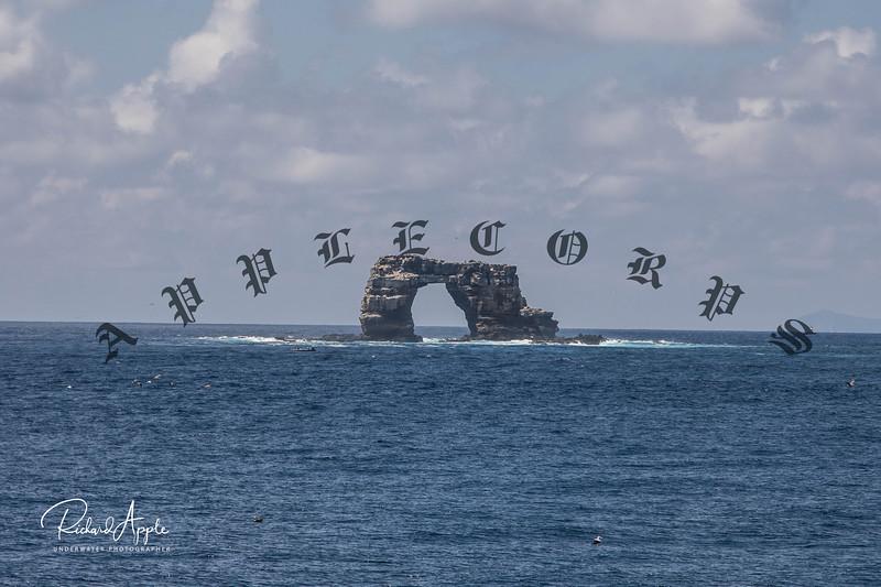 Galapagos2_Apr2019-56