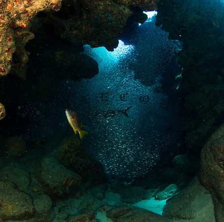 CaymanAug1_2012-134