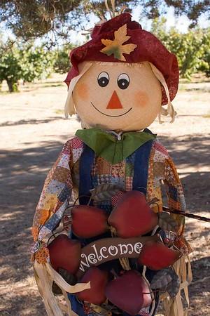 Tehachapi apples