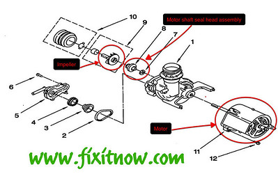 Whirlpool DU810DWGQ1 Dishwasher Pump and Motor Diagram
