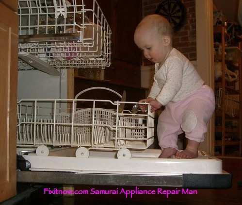 Dishwasher Door Malfunction