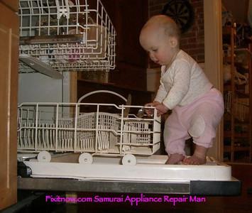 Dishwasher Door Malfunction