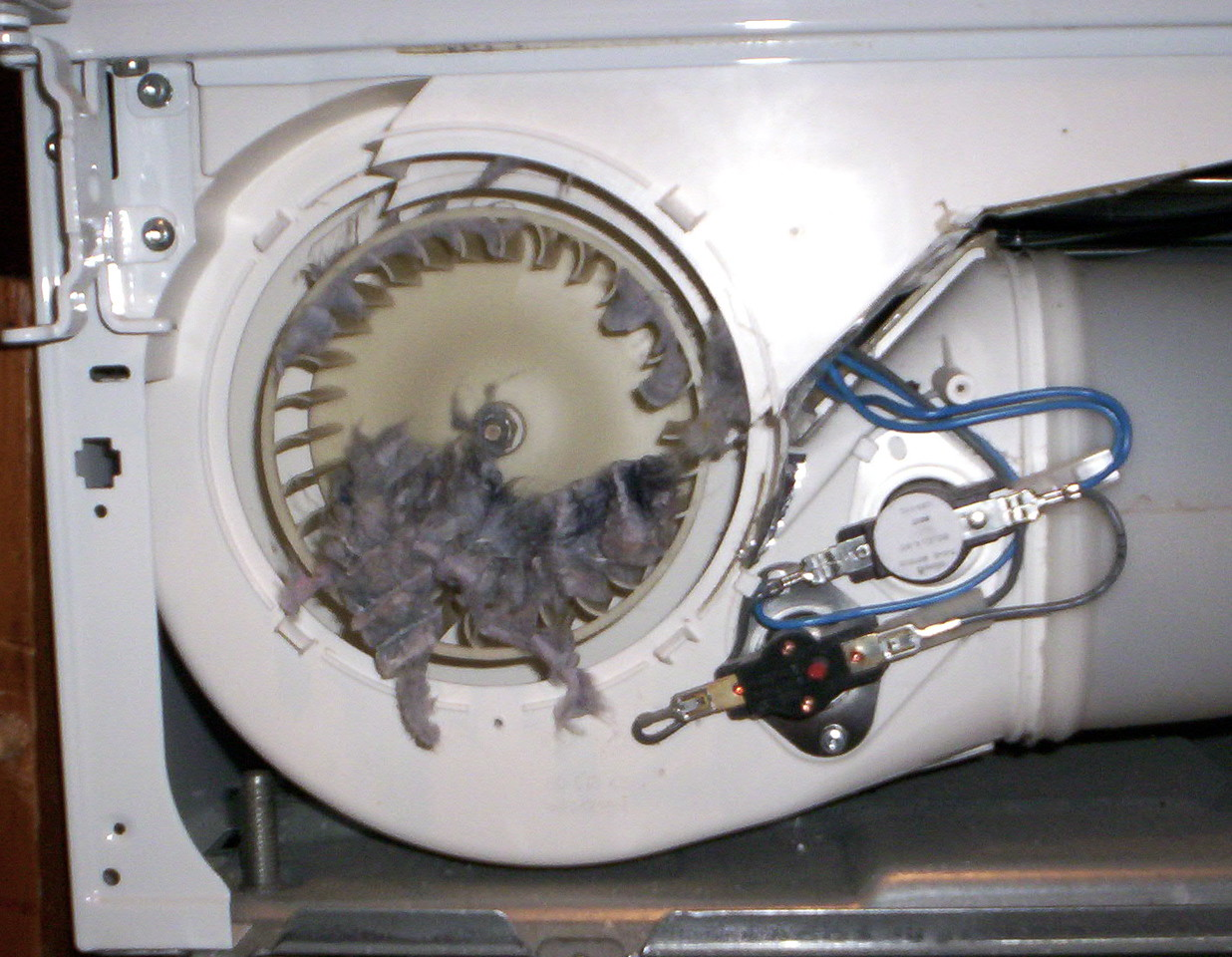 Lint Rat Caught in Dryer Blower