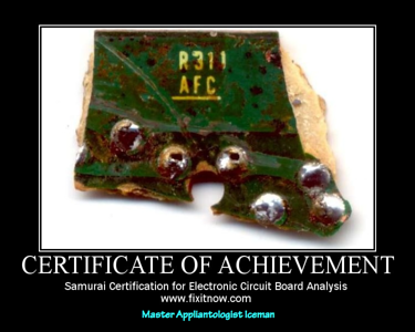 Samurai Certification for Electronic Circuit Board Analysis - Master Appliantologist Iceman