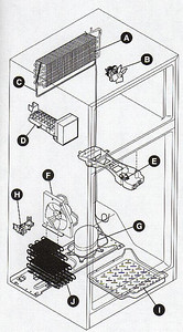 Main Components in a Top and Bottom Refrigerator