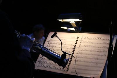 Philip Glass Ensemble 1 Credit Catalin D Constantin (2)