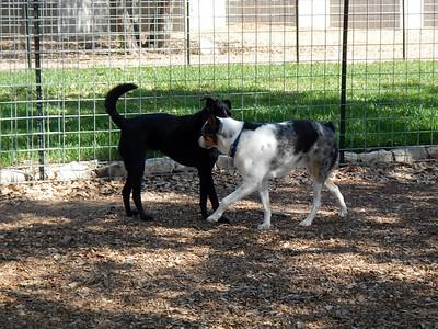 Mindy and Waunakee saying hello