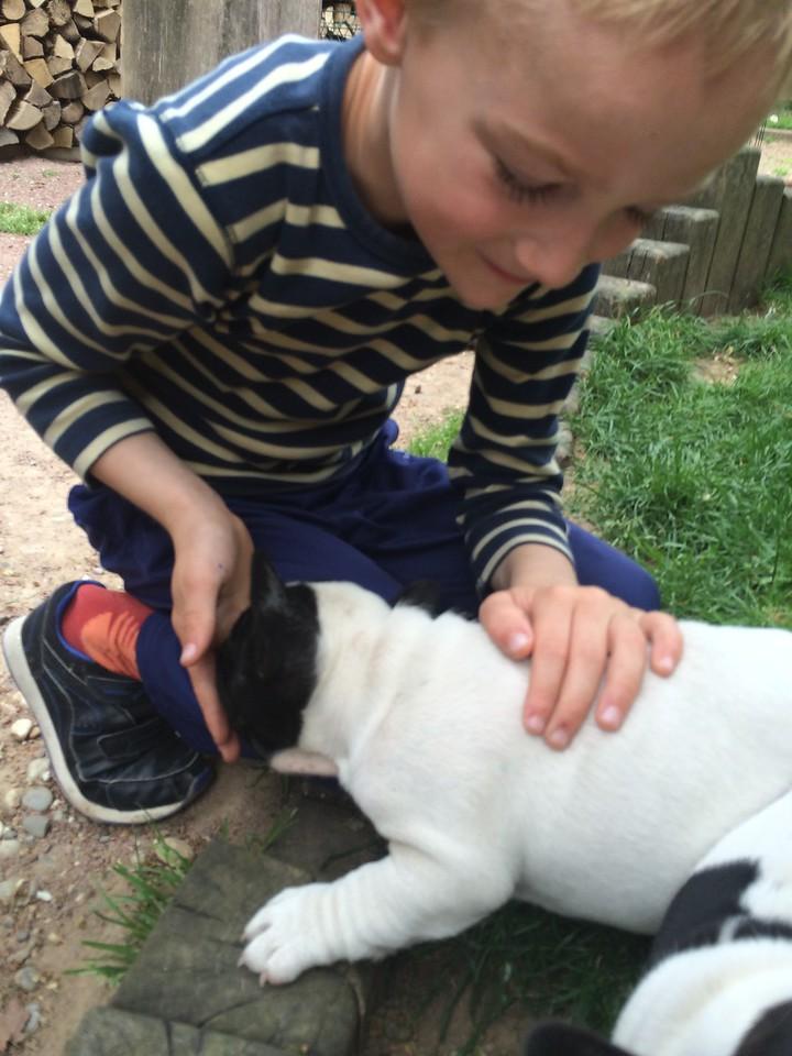 097 Puppy Love