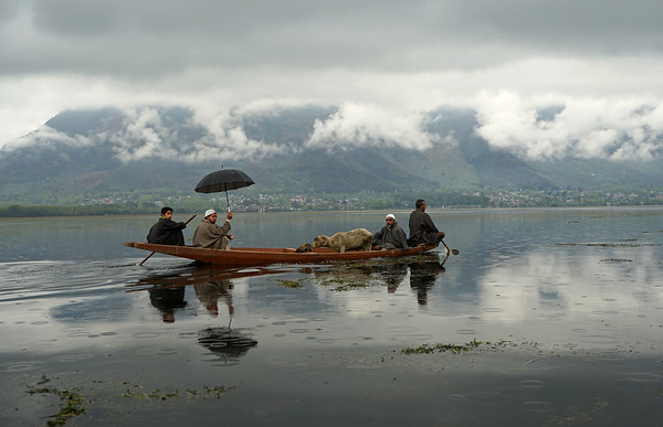 April 2016 - Lake Dal (Srinagar)