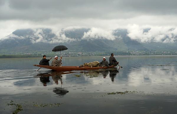 April 2016 - Lake Dal (Srinagar)