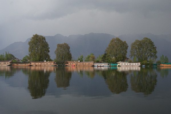 April 2016 - Nageen Lake (Srinagar)
