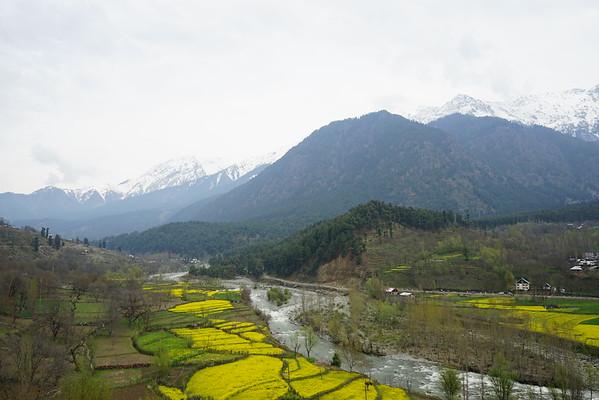 April 2016 - Pahalgam - Kashmir