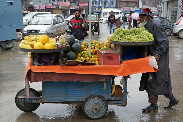 April 2016 - Srinagar (Kashmir)