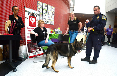 4/2/2016 Mike Orazzi | Staff Connecticut State Trooper Ryan Burke and his K-9 partner Caesar at the Capitol Region Education Council Medical Professions & Teacher Preparation Academy during The fourth Annual Dance for Ana with Love fundraiser for the charitable organization named for one of the young victims of the 2012 Newtown school shootings Saturday.