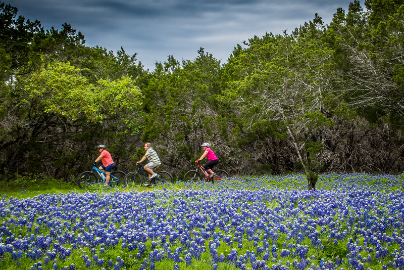 A ride thru the Bluebonnets