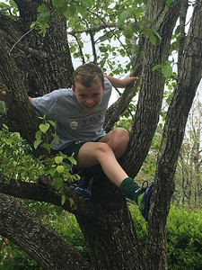 Dylan climbing in the tree before the first game!