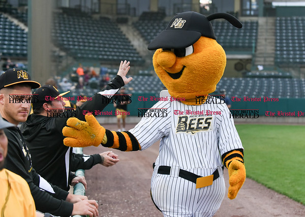 042717 Wesley Bunnell | Staff The New Britain Bees vs the Lancaster Barnstormers played on Thursday evening. Bees mascot Sting high fives Bees players after riding in from the visitors bullpen on the Dattco Bus.