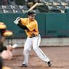 042717  Wesley Bunnell | Staff<br /> <br /> The New Britain Bees vs the Lancaster Barnstormers played on Thursday evening. Conor Bierfeldt (28) in the on deck circle.