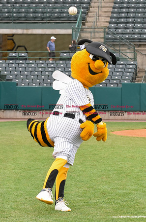 042717 Wesley Bunnell | Staff The New Britain Bees vs the Lancaster Barnstormers played on Thursday evening. Bees mascot Sting throws with bullpen catcher Cody Cherneski before the start of the game.