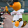 042717  Wesley Bunnell | Staff<br /> <br /> The New Britain Bees vs the Lancaster Barnstormers played on Thursday evening. Bees mascot Sting high fives Eric Fornataro (23) after riding in from the visitors bullpen on the Dattco Bus.