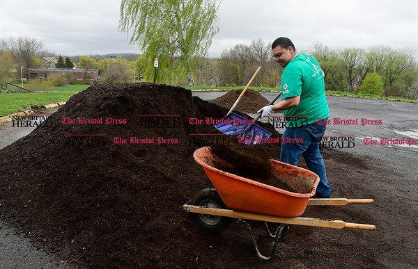 4/22/2017 Mike Orazzi | Staff Adrien Rodriguez uses a snow shovel while mulching at the 16th annual Comcast Cares Day at the Smith Elementary School in New Britain Saturday.