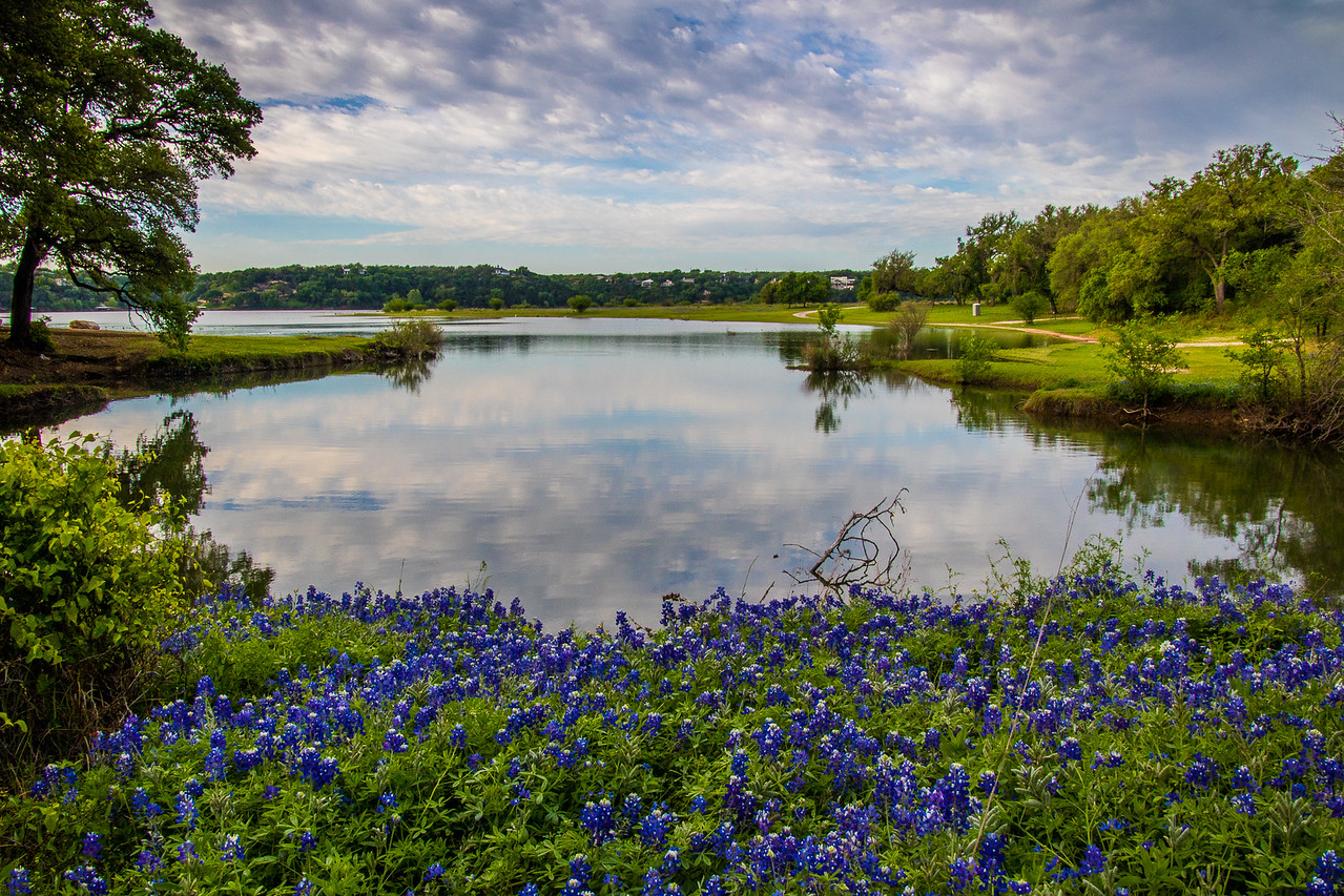 Bluebonnet Cove on Lake Travis