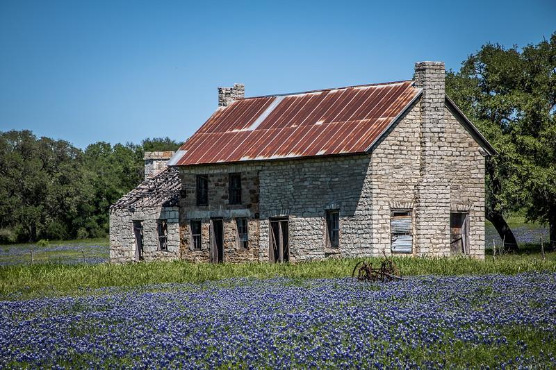 Bluebonnet House Sunny Day