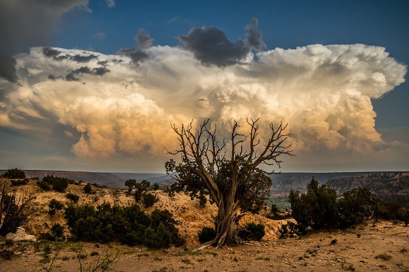 Powerful Canyon Storm