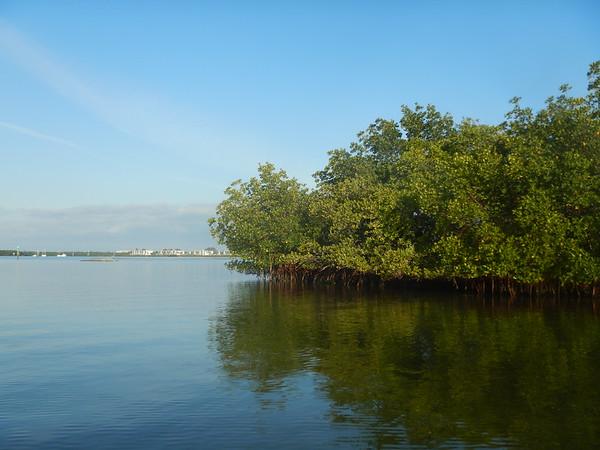 04-19-18 Barrier Island 8am